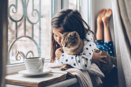 Beneficios de tener una mascota en casa