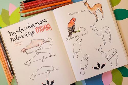 Cómo mejorar tus habilidades de dibujo en 5 sencillos pasos
