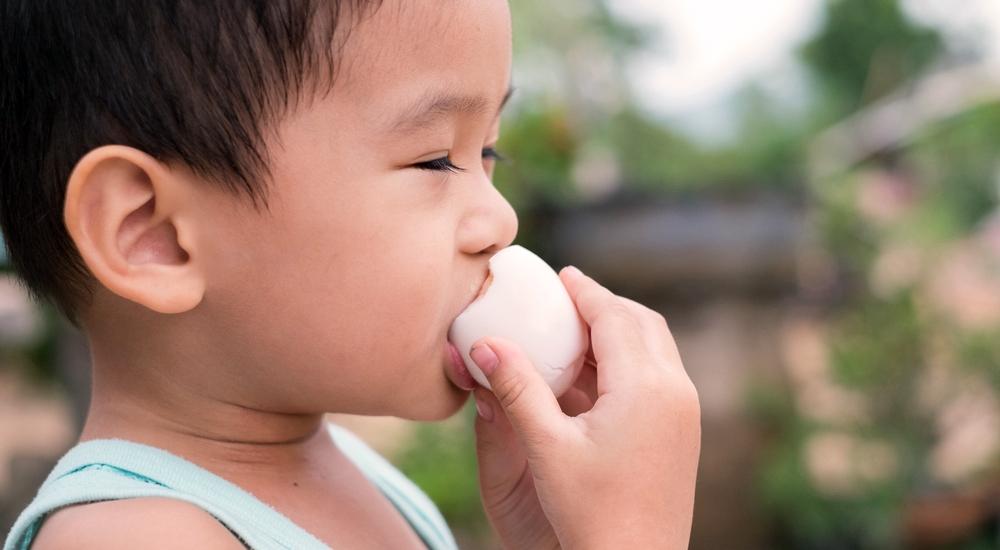 El maní y los huevos ayudan a prevenir alergias en niños