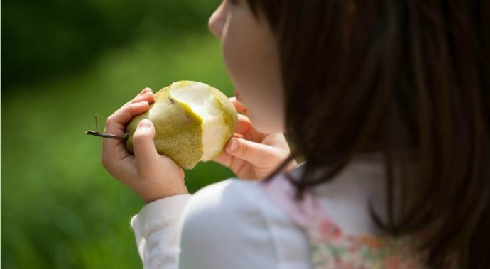 ¿Cómo puedo prevenir la obesidad en mis hijos?
