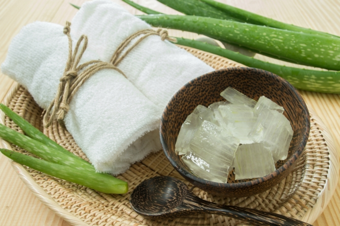 Prepara una pasta casera de aloe vera para calmar la inflamación por insolación