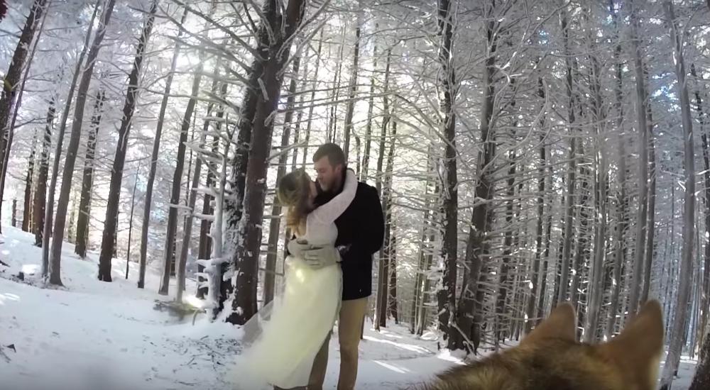Esta pareja usó a su perro como videógrafo de su matrimonio y este fue el resultado