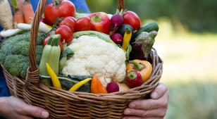 Alimentos orgánicos v.s. Alimentos convencionales para tus hijos