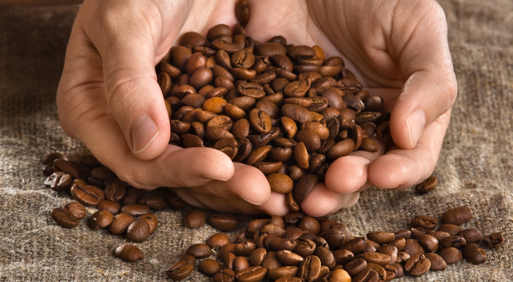 Ruta del Café: El corazón de Villa Rica