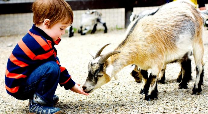 Cómo enseñarle a tus hijos a ser amables