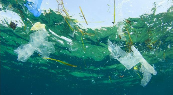 Estos artistas decidieron averiguar qué pasa con el plástico que usamos y esto es lo que descubrieron