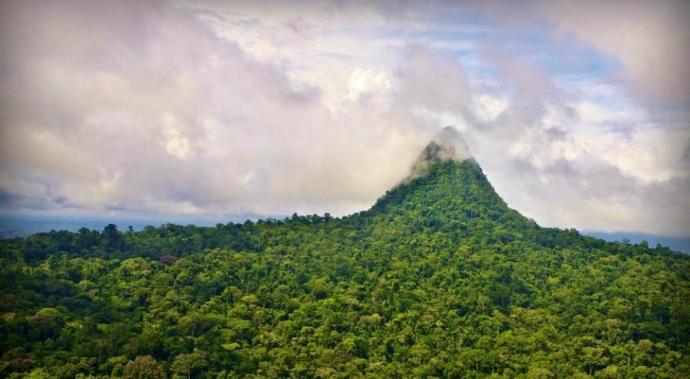 ¡Histórico! ¡Perú crea una de las reservas naturales más grandes del mundo!