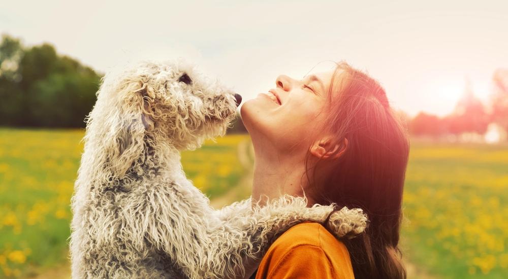 5 lecciones sobre la felicidad que aprendimos de nuestros perros