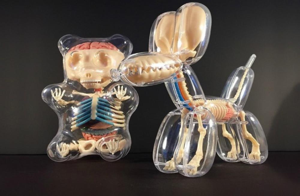 Artista descubre la anatomía de los animales (hechos con globos ...